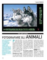 FOTOGRAFARE GLI ANIMALI - Media World