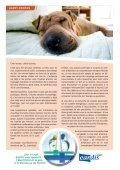 Magazine Eandis 11 - Septembre 2009 - Page 2