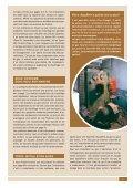 Magazine Eandis 11 - Septembre 2009 - Page 5
