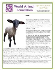 Many people believe that shearing sheep helps animals who might ...