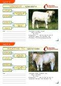 Pour télécharger la présentation des lots 1 à - Web-agri - Page 2