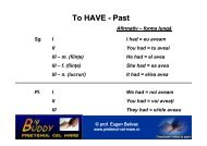 To HAVE - Past - PRIETENUL cel Mare – Big BUDDY