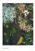 Klimaten 6. Het Tropisch Regenwoudterrarium. - Lacerta - Page 2