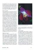 Klimaten 6. Het Tropisch Regenwoudterrarium. - Lacerta - Page 4