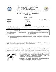 universidad latina de panamá sede de chiriquí facultad de negocios ...