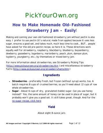 Strawberry Jam no Pectin PDF