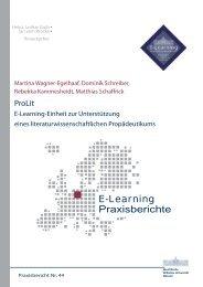 Praxisbericht 44 - ERCIS - European Research Center for ...