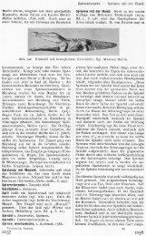 Berlin kleine, sorgsam aus Holz geschnitzte Krokodile, deren Zähne ...
