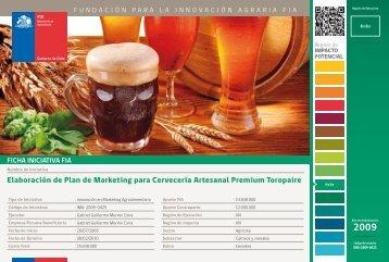 Elaboración de Plan de Marketing para Cervecería Artesanal ... - Fia