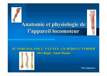 Anatomie et physiologie de l'appareil locomoteur - ClubOrtho.fr