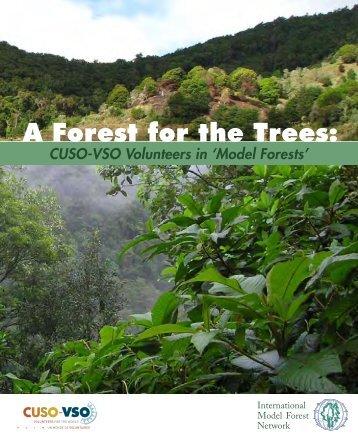 model forest - Cuso International