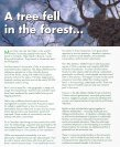 model forest - Cuso International - Page 4