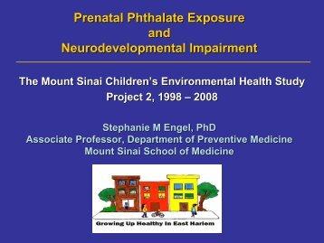 Prenatal Phthalate Exposure and Neurodevelopmental Impairment