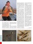 Read article (pdf - 302 KB) - Jens Bursell - Page 5