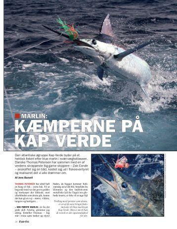 Read article (pdf - 987 KB) - Jens Bursell