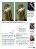 Effektivt agnfisktakkel - Jens Bursell - Page 4