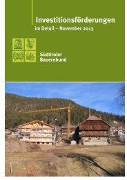 Broschüre Investitionsförderungen 2013-11-21 - Südtiroler ...
