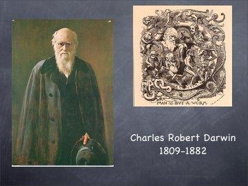 Darwin 2 - Geology Home Page
