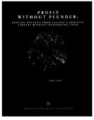 profit without plunder - World Resources Institute