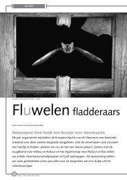 jg8_nr2_Fluwelen fladderaars.pdf - Natuurpunt Gent