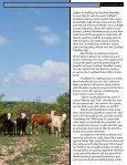 Kelli Merritt's - Texas Tech University - Page 3