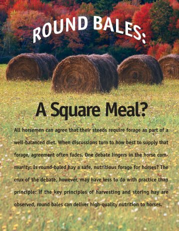 Round Bales: A Square Meal? - Kentucky Equine Research