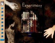 Ilinca Bernea - Experiment - Equivalences.org