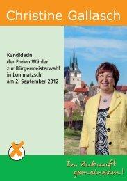 Flyer - Freie Wähler Lommatzsch
