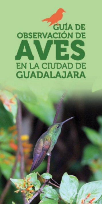 AVES - Centro Universitario de Ciencias Biológicas y Agropecuarias ...