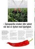 Magasin 5 Mat smaker bedre der pepper'n - Bama - Page 4