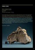 oder privatsammlungen - Meteorite Recon - Seite 4