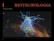 biotecnologia - Prof Iva