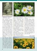 RIVISTA 16 (dicembre 2010) - Page 6