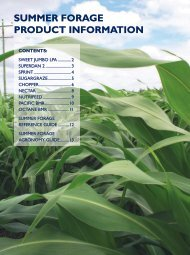 SUMMER FORAGE pROdUct inFORMAtiOn - Directrouter.com