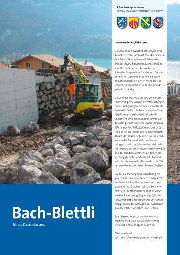 Nr. 19, Dezember 2011 - schwellenkorporationen.ch