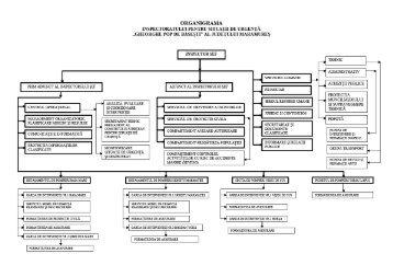 Organigrama unitatii - IGSU