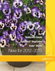 goldsmith seeds new for 2012–2013