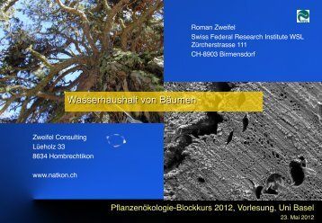 Lectures at the University of Basel, 2012 - Natkon.ch - Home