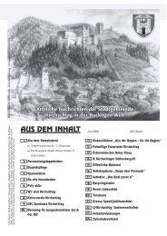 (4,95 MB) - .PDF - Stadtgemeinde Kirchschlag in der Buckligen Welt