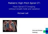 Download presentation (1.6 MB) - DSCT.com