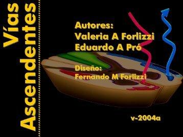Microsoft PowerPoint - v-asc.ppt - FMV