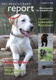 Absolut Hund Report Ausgabe: Oktober 2010 - Hundeschule in ...
