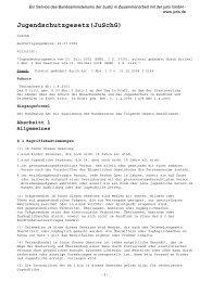 Paragraph 9 des Jugendschutzgesetzes - Vollrausch ohne mich