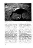 Er trekk og overvintring av gjess et problem for jordbruket på Jæren? - Page 6