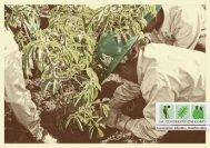 Los Angeles Conservation Corps Brochure - LA Conservation Corps