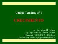 UT7-Diapositivas.ppt - Facultad de Ciencias Agropecuarias