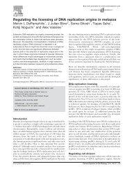 Regulating the licensing of DNA replication origins in ... - Cromatina
