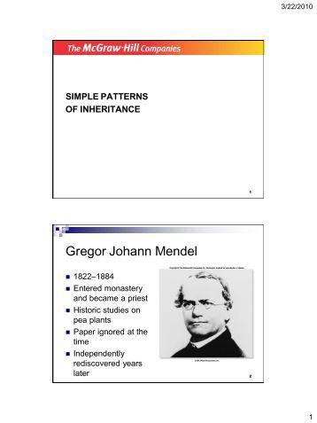 Printables Patterns Of Inheritance Worksheet b 4 7 genetics worksheet inheritance patterns simple of inheritance