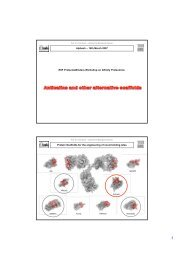 Alpbach – 14th March 2007 ESF ProteomeBinders Workshop on ...
