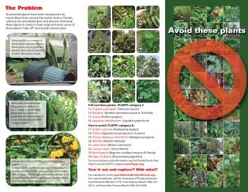Avoid these plants - Volusia County Government